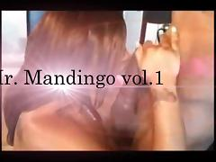 Mr. Mandingo vol.1... Ebony Edition