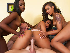 Ana Foxxx & Leilani Leeane & Skin Diamond  in 2 Chicks Same Time