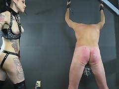 BDSM, BDSM, Femdom, Tattoo