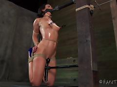 Allure, Adorable, Allure, BDSM, Bondage, Fetish