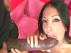 Maya Gates is sucking giant hard dick of black dude