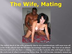 Interracial, Adultery, Cuckold, Interracial, Swingers