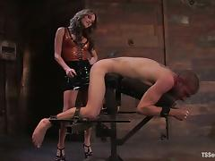 Cute tranny Kelly Shore torments and fucks Tristan Mathews in a cellar