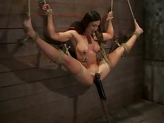 Bound, BDSM, Bondage, Bound, Brunette, Pussy
